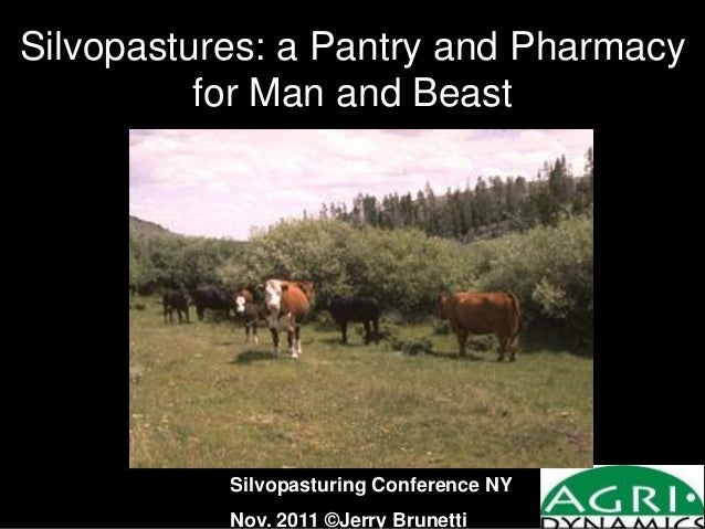 Silvopastures: a Pantry and Pharmacy for Man and Beast Silvopasturing Conference NY Nov. 2011 ©Jerry Brunetti