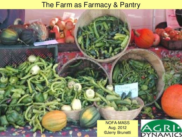 The Farm as Farmacy & Pantry NOFA-MASS Aug. 2012 ©Jerry Brunetti