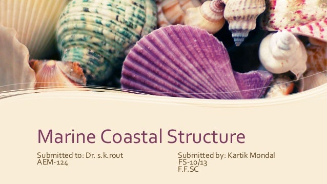 Marine Coastal Structure Submitted to: Dr. s.k.rout Submitted by: Kartik Mondal AEM-124 FS-10/13 F.F.SC