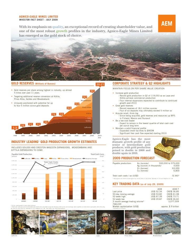 AEM Factsheet Q2 2009