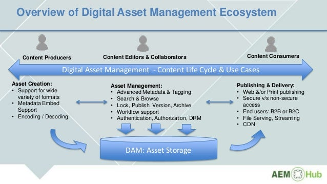 adobe asset management