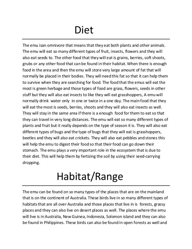 Diet The emu isan omnivore that means that they eat both plants and other animals. The emu will eat so many different type...