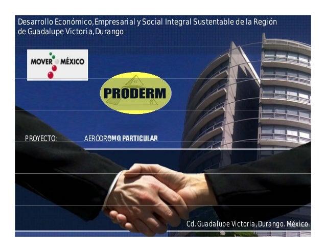 Desarrollo Económico, Empresarial y Social Integral Sustentable de la Región de Guadalupe Victoria, Durango PROYECTO: AERÓ...
