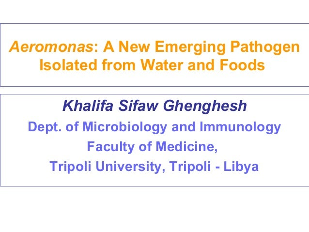 Aeromonas: A New Emerging Pathogen Isolated from Water and Foods Khalifa Sifaw Ghenghesh Dept. of Microbiology and Immunol...