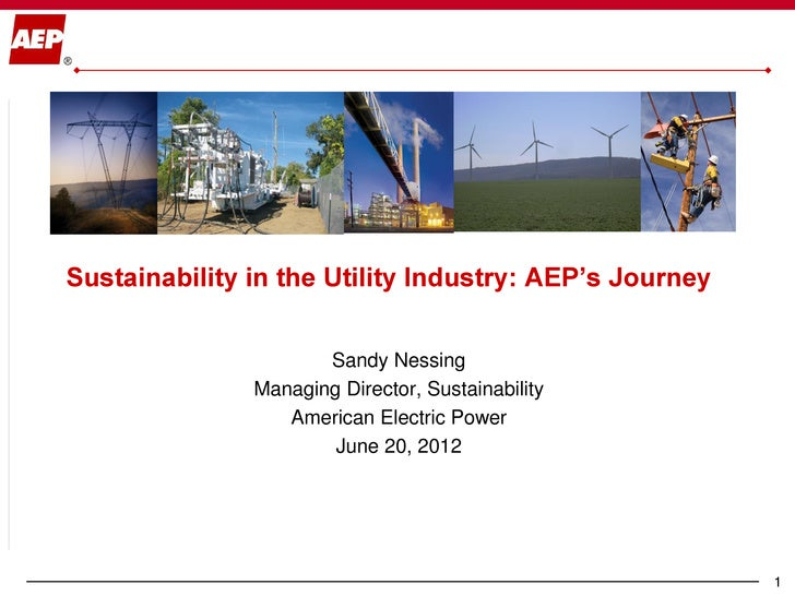 Sustainability in the Utility Industry: AEP's Journey                      Sandy Nessing               Managing Director, ...