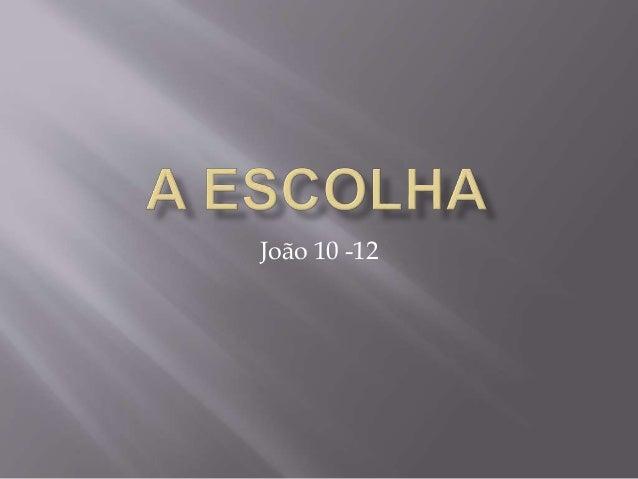 João 10 -12
