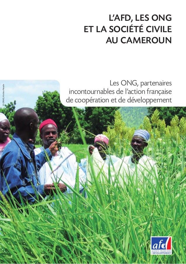 L'AFD, LES ONG                                ET LA SOCIÉTÉ CIVILE                                     AU CAMEROUN        ...