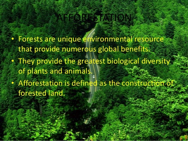 Afforestation essay