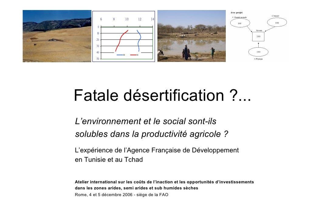 Fatale désertification