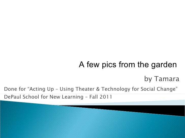 "by Tamara Done for ""Acting Up – Using Theater & Technology for Social Change"" DePaul School for New Learning – Fall 2011 A..."