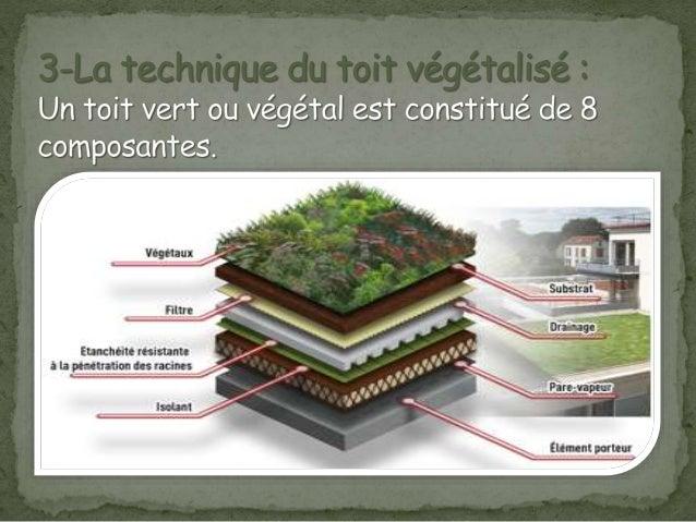 Toiture vegetalis e atelier de construction - Entretien toit vegetalise ...