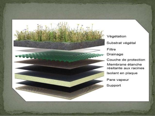 Toiture Vegetalis E Atelier De Construction