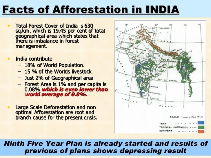 benefits of afforestation Since the 1997 kyoto protocol, afforestation of agricultural lands has taken on an   benefits of tree planting equal the sum of the marginal commercial timber.