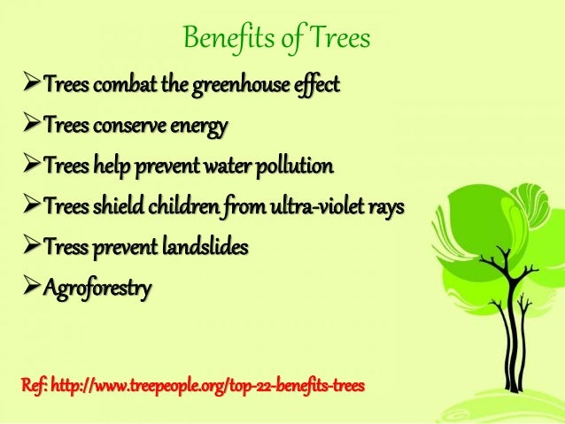 afforestation is an answer to global warming The science indicates that global warming is a natural phenomenon and as such there is little humans can do to stop it, or the global cooling cycle which will follow answered in green living.