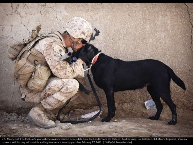 U.S. Marine Cpl. Kyle Click, a 22-year-old improvised explosive device detection dog handler with 3rd Platoon, Kilo Compan...
