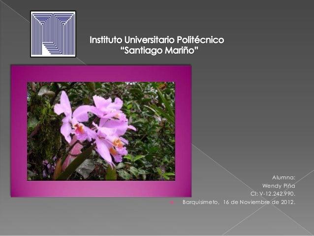 Alumna:                                Wendy Piña                           CI: V-12.242.990.   Barquisimeto, 16 de Novie...