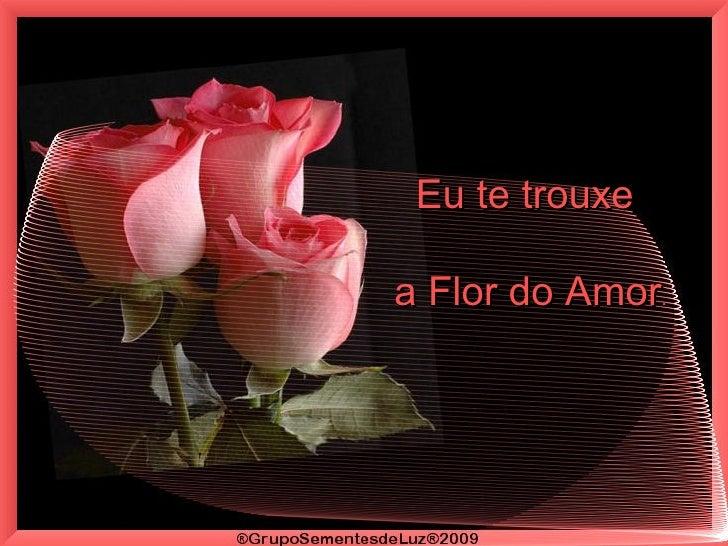 Eu te trouxe  a Flor do Amor .