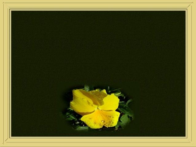 28/08/200528/08/2005