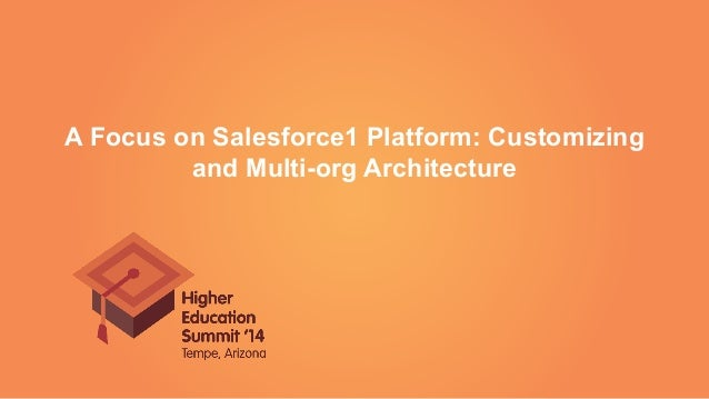 A Focus on Salesforce1 Platform: Customizing and Multi-org Architecture