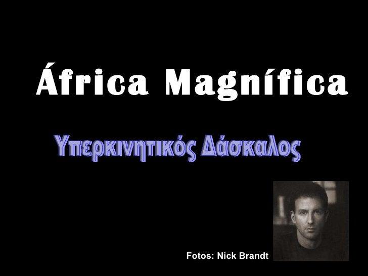 África Magnífica Fotos: Nick Brandt  Υπερκινητικός Δάσκαλος