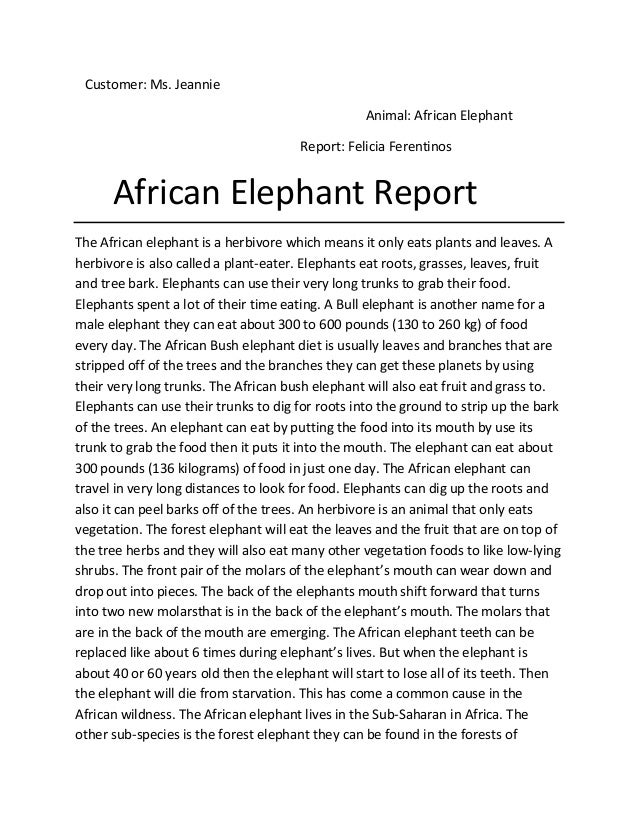 Customer: Ms. Jeannie                                                  Animal: African Elephant                           ...