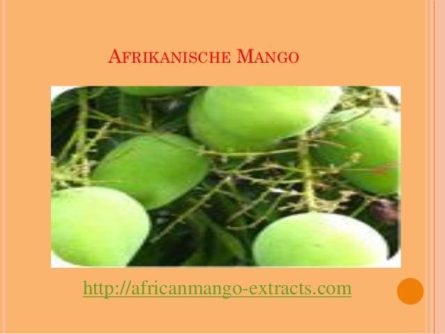 AFRIKANISCHE MANGOhttp://africanmango-extracts.com