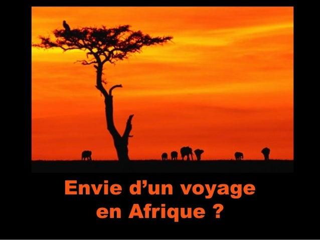 Envie d'un voyage  en Afrique ?