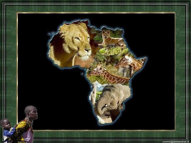 Afrika M