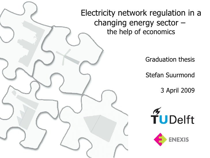 Electricity network regulation in a     changing energy sector –        the help of economics                     Graduati...