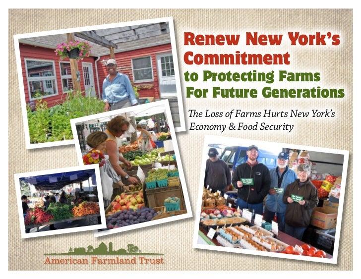 New York State Budget Advocacy Tool 2011