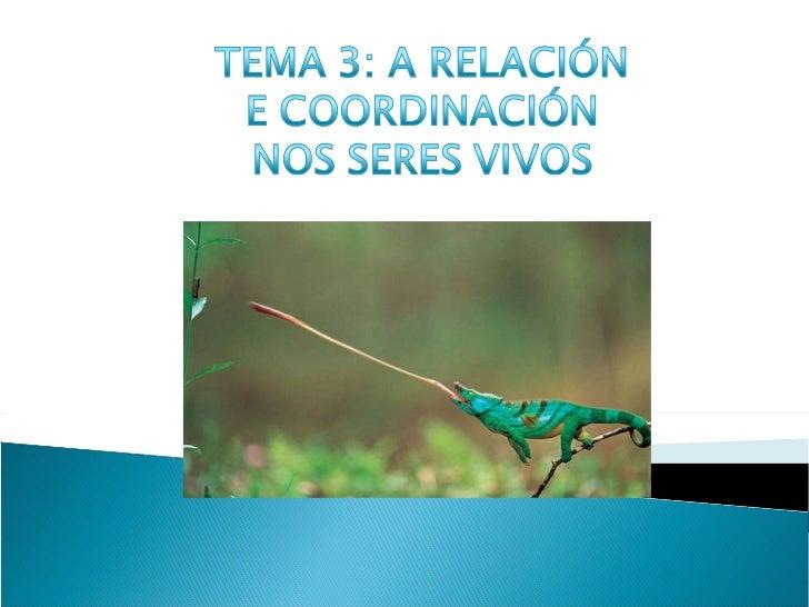 A función de relación nos seres vivos