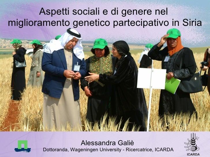 Aspetti sociali e di genere nel  miglioramento genetico partecipativo in Siria <ul><li>Alessandra Galiè   </li></ul><ul><l...