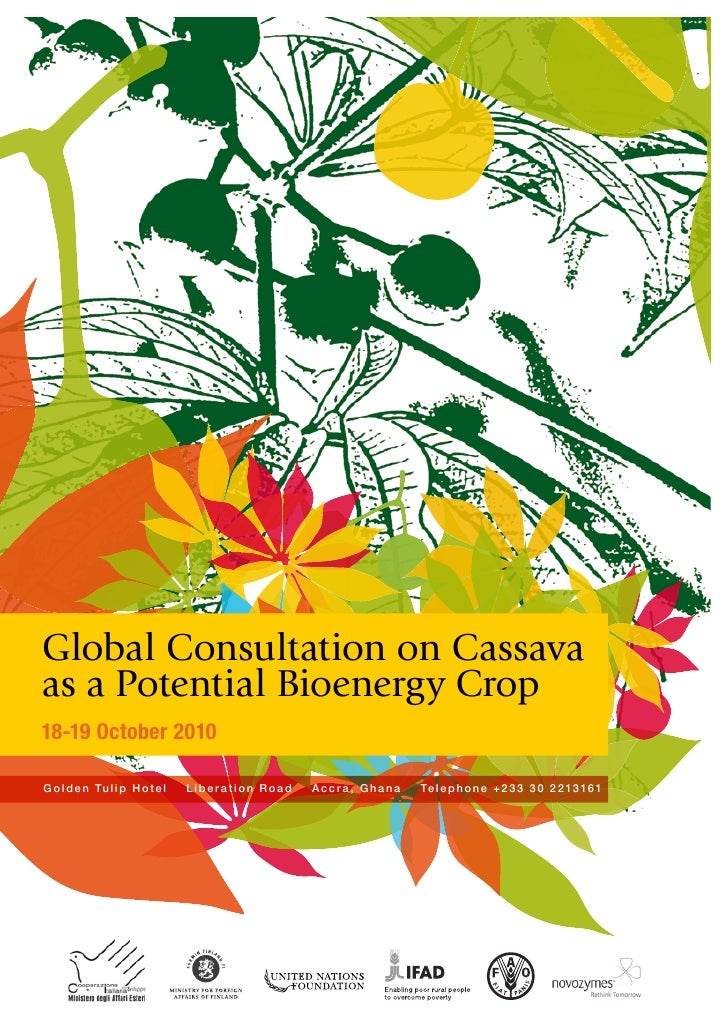 Global Consultation on Cassava as a Potential Bioenergy Crop 18-19 October 2010  G o l d e n Tu l i p H o t e l   Liberati...