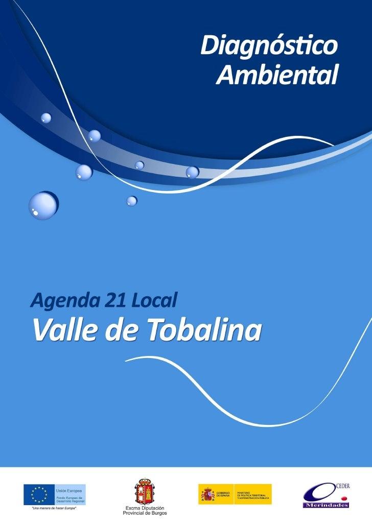 Agenda 21 Valle de TobalinaEl presente documento ha sido elaborado por la Empresa DYNAMYCA CONSULTING,participando en el m...