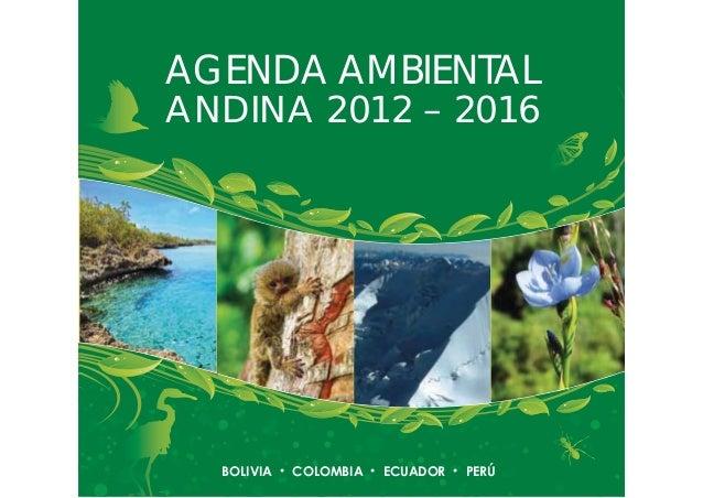 | 1 AGENDA AMBIENTAL ANDINA 2012 – 2016 BOLIVIA COLOMBIA ECUADOR PERÚ