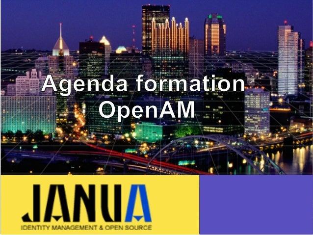 – – – Agenda formation OpenAM