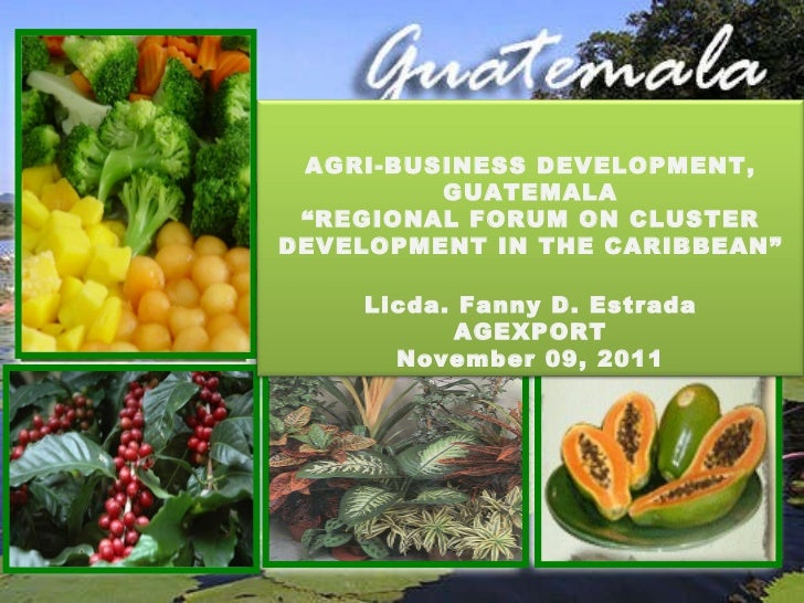 "<ul><li>OPORTUNIDADES DE NEGOCIO EN GUATEMALA </li></ul>AGRI-BUSINESS DEVELOPMENT, GUATEMALA "" REGIONAL FORUM ON CLUSTER D..."