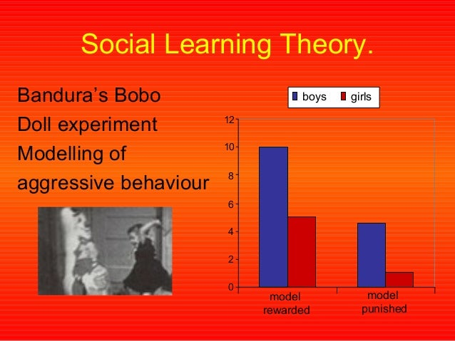 the biological perspective and social learning theory slt essay Social learning theory (slt), cognitive approach, behaviorist approach, humanistic approach, psychodynamic approach and biological approach social learning theory (slt) – this learning occurs from observation, imitation or modeling of another person or role model.