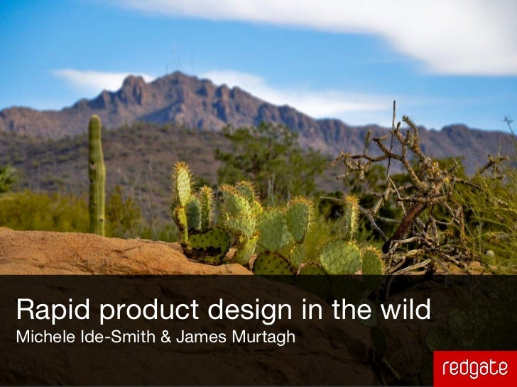 Rapid product design in the wildMichele Ide-Smith & James Murtagh