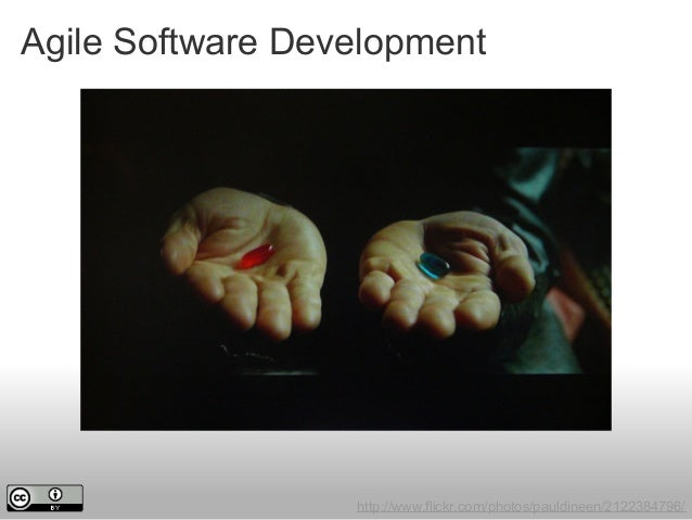 Agile Software Development http://www.flickr.com/photos/pauldineen/2122384796/