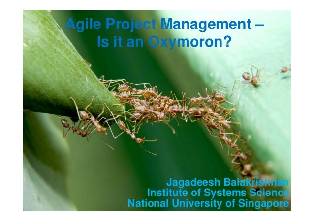 Slide 1 © 2014 NUS. All rights reserved Agile Seminar/V 1.0 Agile Project Management – Is it an Oxymoron? Jagadeesh Balakr...