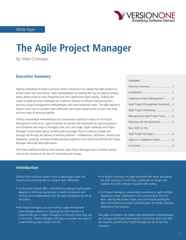 Agile Project Manager