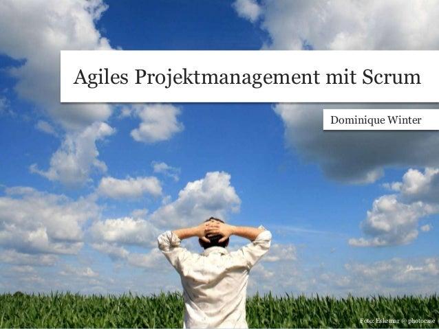 Agiles Projektmanagement mit Scrum Dominique Winter Foto: Eskemar @ photocase