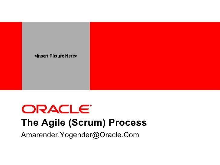 The Agile (Scrum) Process [email_address]