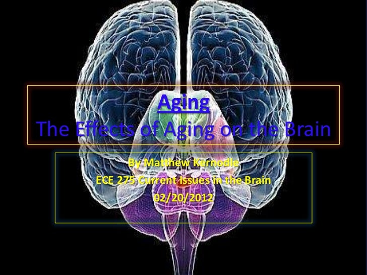 AgingThe Effects of Aging on the Brain            By Matthew Kernodle      ECE 275 Current Issues in the Brain            ...