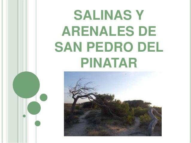 SALINAS Y ARENALES DE SAN PEDRO DEL PINATAR