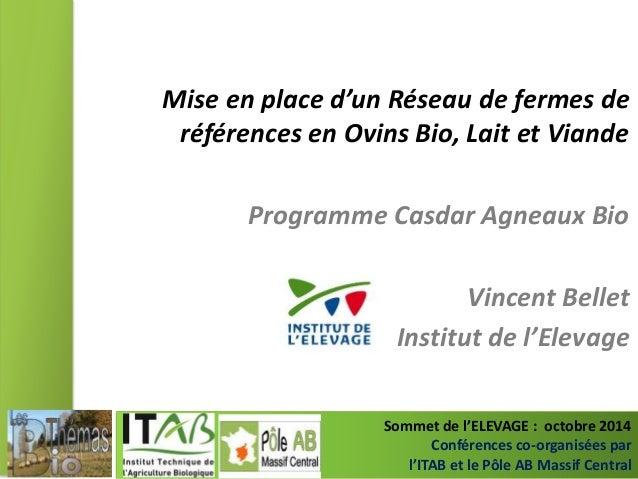 Mise en place d'un Réseau de fermes de  références en Ovins Bio, Lait et Viande  Programme Casdar Agneaux Bio  Vincent Bel...