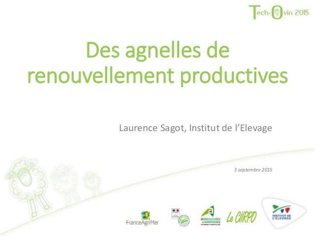Des agnelles de renouvellement productives Laurence Sagot, Institut de l'Elevage 3 septembre 2015