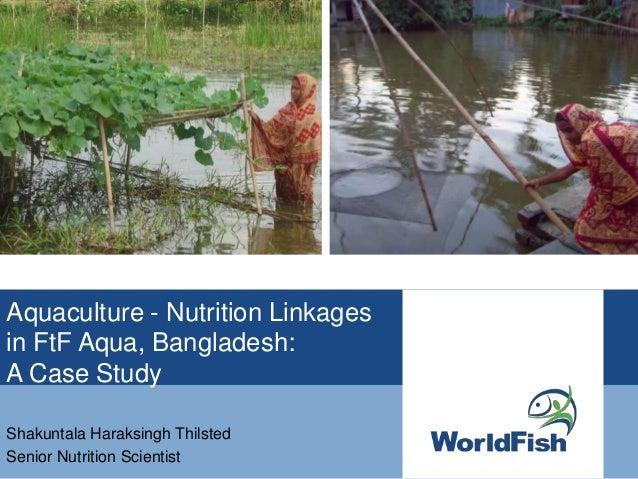 Aquaculture - Nutrition linkages with Feed the Future Aqua, Bangladesh: A Case Study