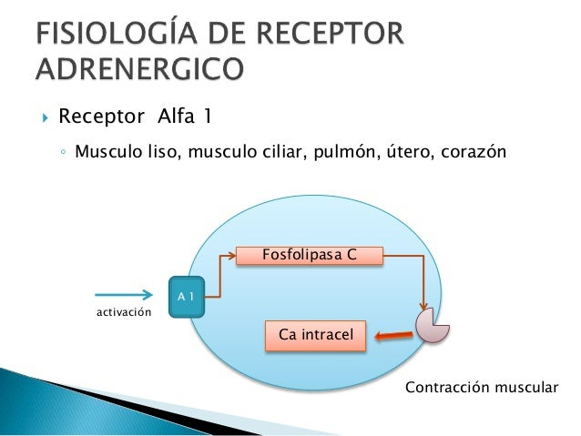 misoprostol mecanismo accion utero